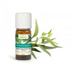 Mélange d'huiles essentielles FORÊT D'EUCALYPTUS - DIRECT NATURE